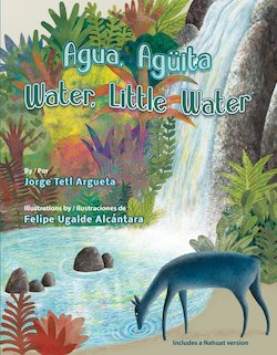 Agua, Aguita = Water, Little Water = at Achichipiga At