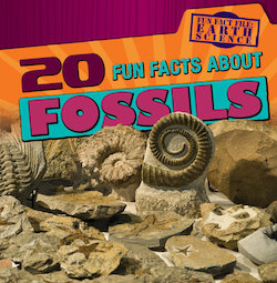 20 Fun Facts About Fossils
