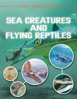 Sea Creatures and Flying Reptiles