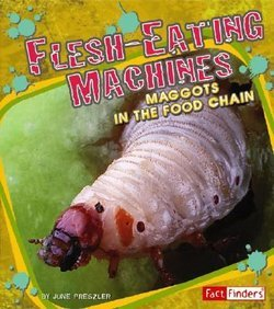 Flesh Eating Machines Maggots In The Food Chain