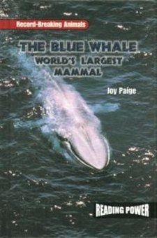 The Blue Whale: World's Largest Mammal
