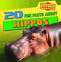 20 Fun Facts About Hippos