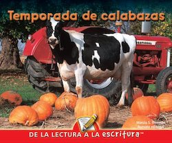 Temporada de Calabazas (Pumpkin Time)