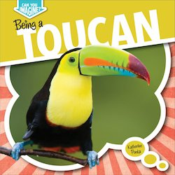 Being a Toucan