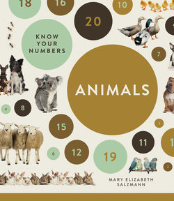 Know Your Numbers: Animals